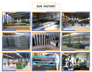Anping Yaqi Wire Mesh Co.,Ltd